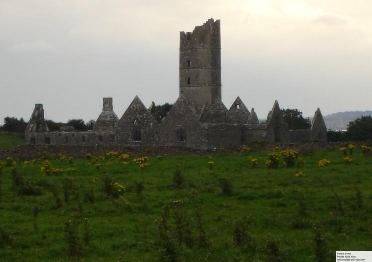 Abbaye Moyne