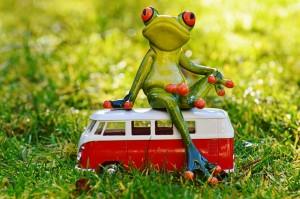 camping-car grenouille