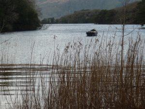 killarney lac
